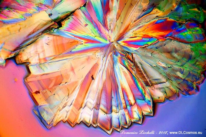 Cristalli osservati al microscopio ottico in luce polarizzata.
